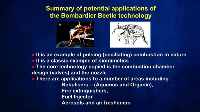 BBeetle Applications.007