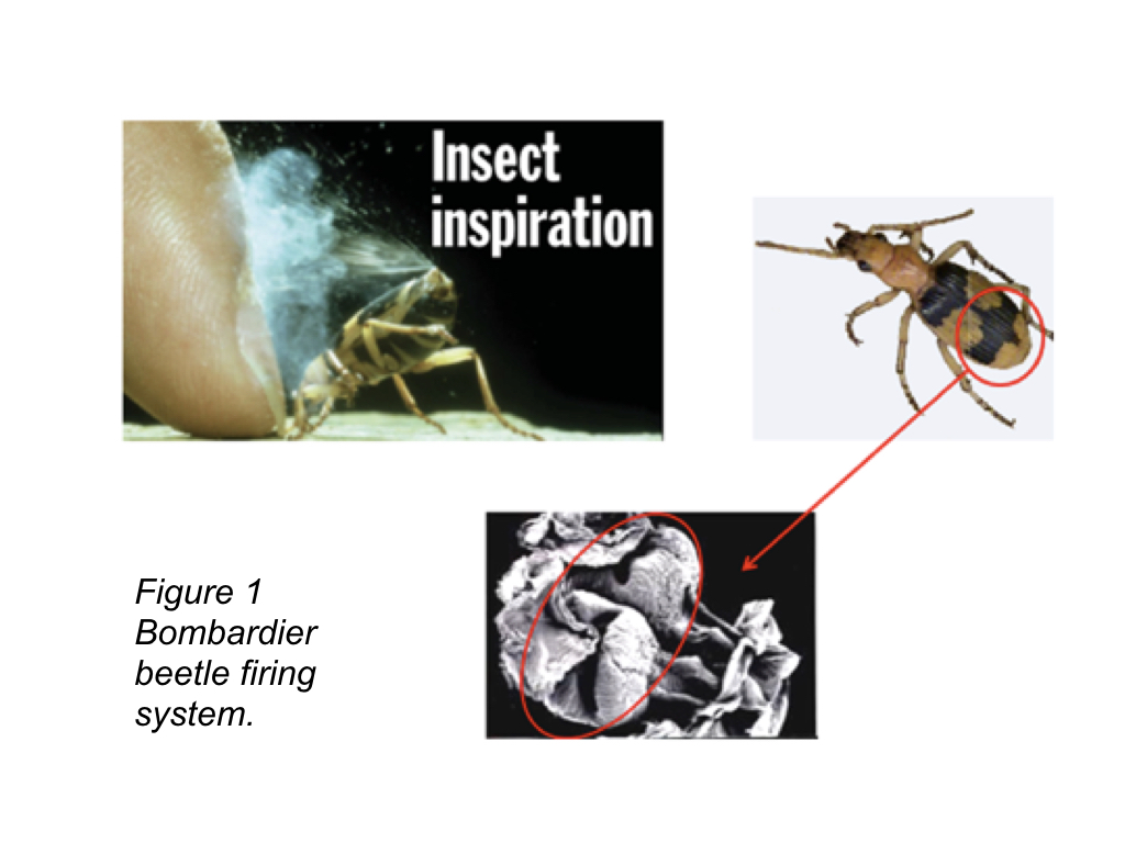 Bombardier Beetle and Novel Spray Mechanism FIRE EXTINGUISHER - FIGS.001
